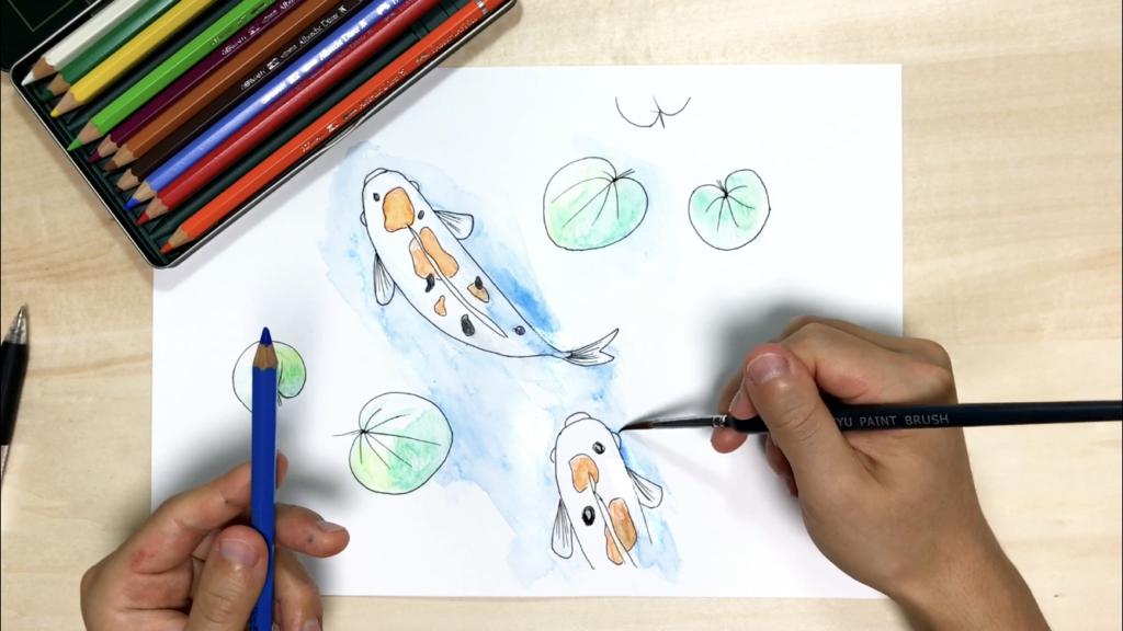 上から見た鯉の色鉛筆の簡単なイラストの描き方