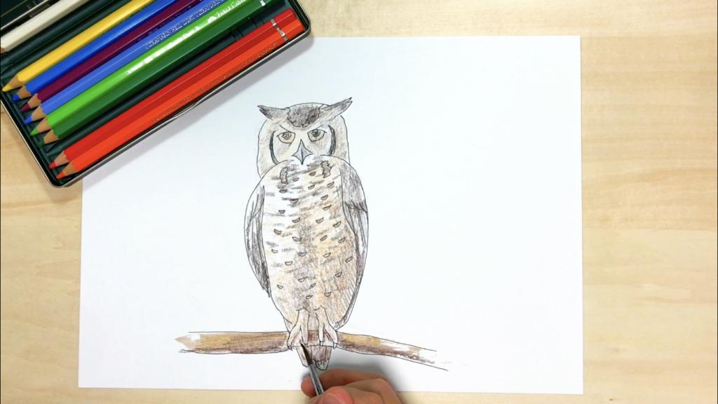 フクロウの簡単なイラストの描き方