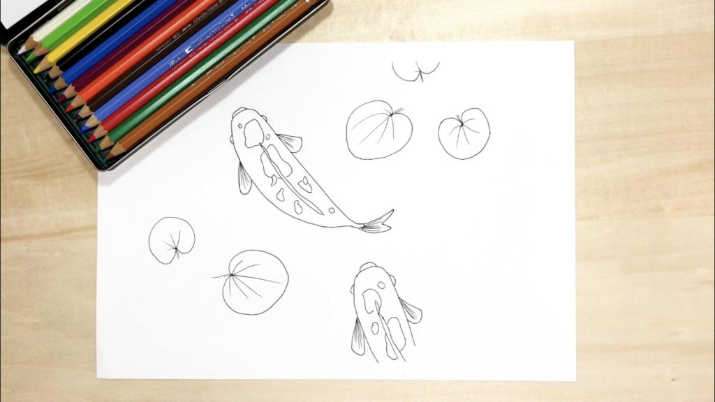 鯉の色鉛筆の簡単なイラストの描き方