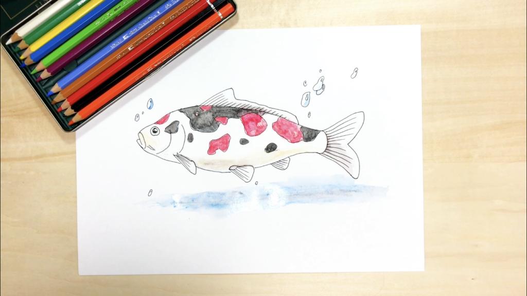 横から見た鯉の色鉛筆の簡単なイラストの描き方