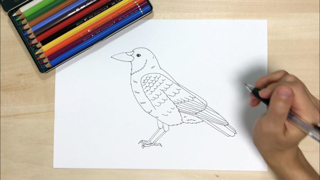 カラスの簡単なイラストの描き方