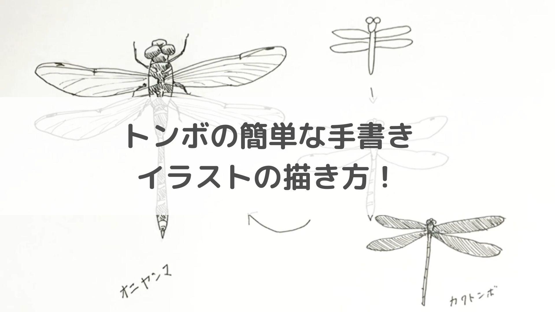トンボの簡単な手書きイラストの描き方!【水彩色鉛筆とペン】